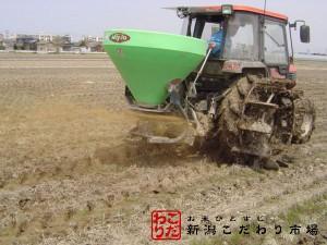 無農薬・無化学肥料