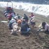 雪下にんじん収穫体験