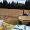 秋の肥料散布