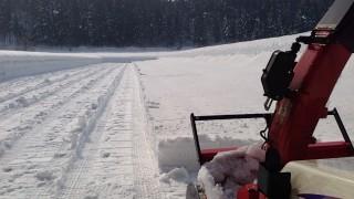 人参畑の除雪