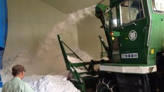 雪室の雪入れ