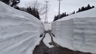 作業所までの農道除雪