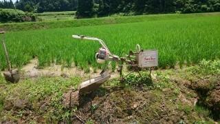 九州地方の豪雨被害に合われた方々に、心から御見舞を申し上げます。