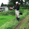 除草剤を控えた草刈り作業