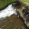 新潟の米山を流れる清流