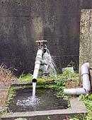 「どっこん水」の採水場