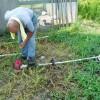 除草作業の日々