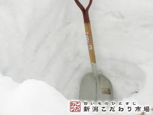 豪雪ならではの恩恵