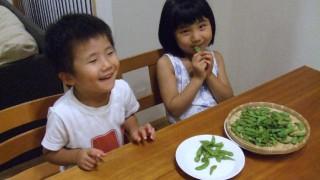 安心安全な茶豆