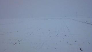 お彼岸の雪