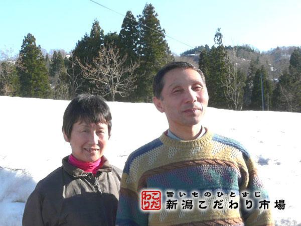 山田 栄のプロフィール