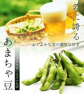 黒埼産茶豆 あまちゃ豆
