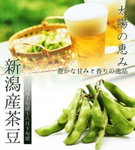 新潟産茶豆