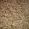 籾摺したての玄米