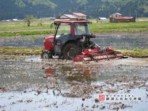 南魚沼の肥沃な土壌