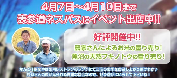 表参道ネスパスへイベント出店!2016年4月7日~4月10日